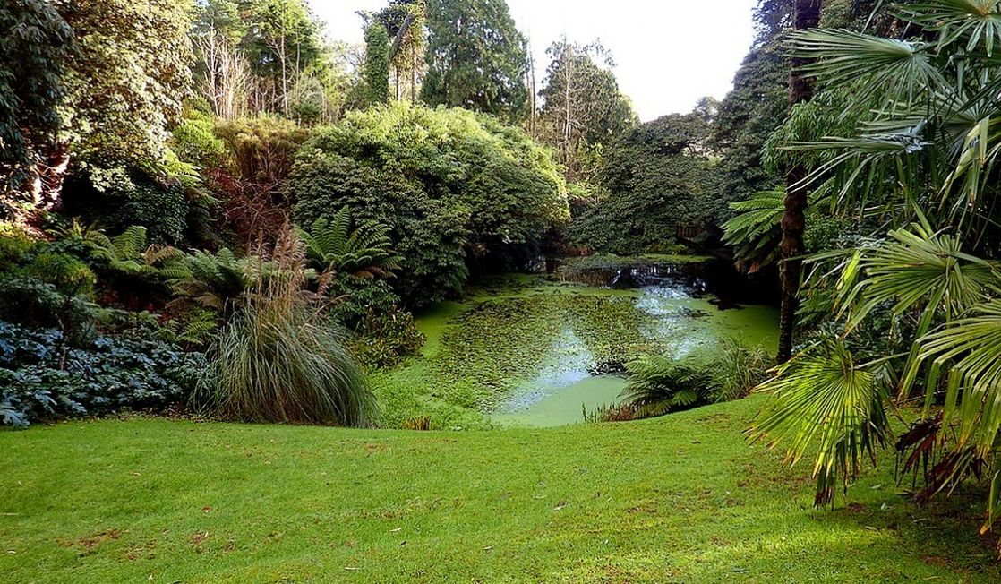 Trengwainton Garden, Penzance