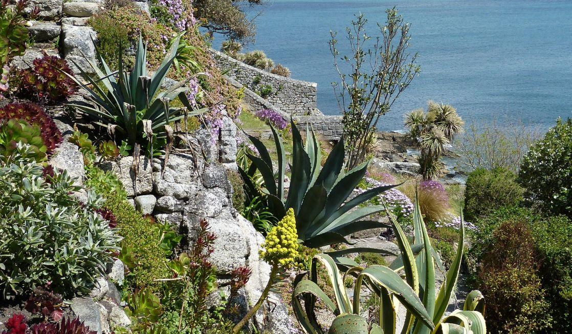 St Michaels Mount gardens